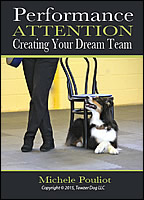 Creating Your Dream Team